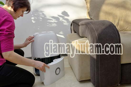 Chọn mua máy hút không khí ẩm có dung tích bình chứa phù hợp