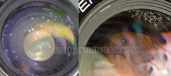 độ ảm cao ảnh hưởng đến chất lượng máy ảnh