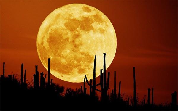 mặt trăng máu là gì